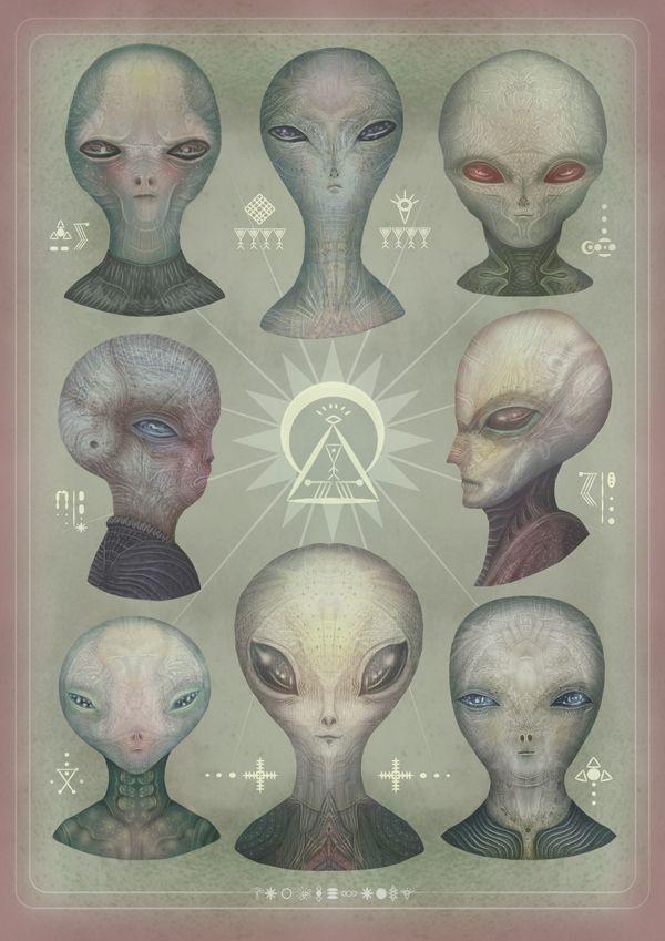 Portraits of the Grey Alien Species Personal...