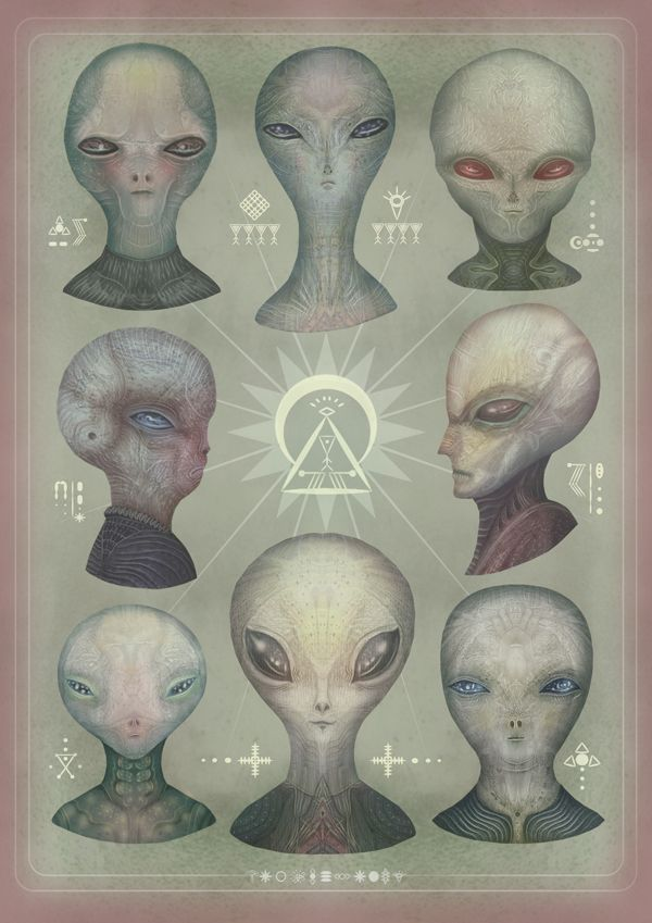Portraits of the Grey Alien Species Personal...