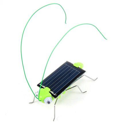 The Frightened Grasshopper: A Solar-Powered Robot Bug: Brandon's final STEM Expo choice