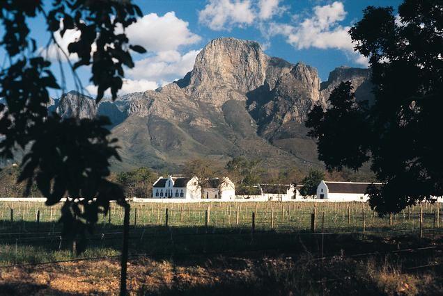 www.sunsafaris.com #Boschendal #Wine #Farm #Franschhoek #cape #winelands #southafrica #capetown