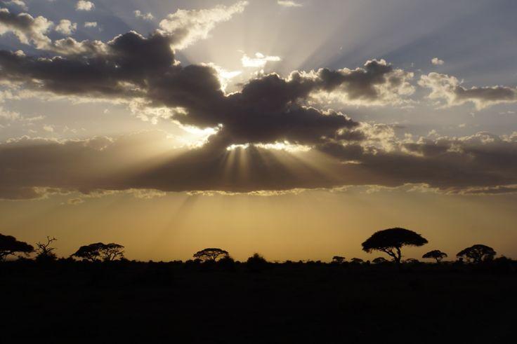 Amazing sunset in Amboselli National Park, Kenya.