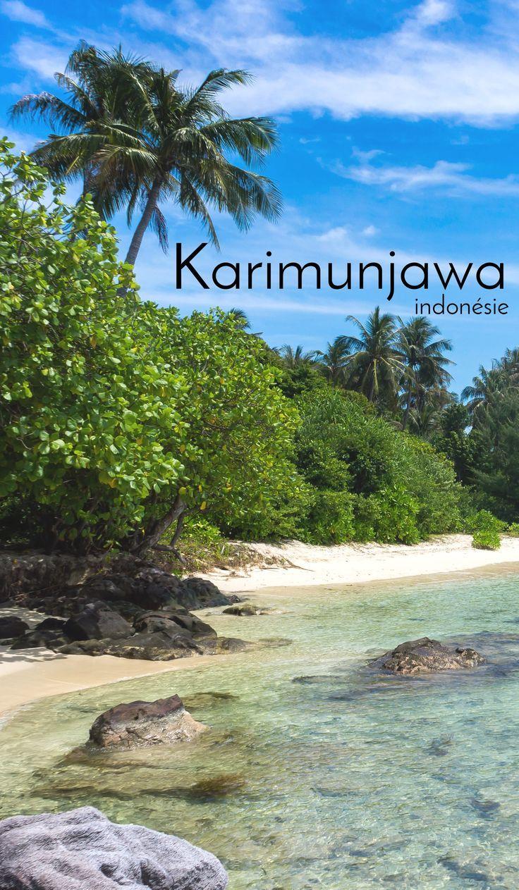 Éloigné, difficile d'accès, l'archipel de Karimunjawa en Indonésie saura récompenser ceux qui se décident à lui rendre visite !  #indonésie #voyage #travel #indonesia #karimunjawa #travelblog #island #beach #paradise