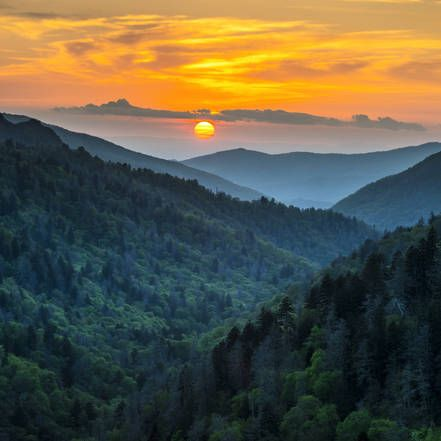 In de top 10 van Amerikaanse nationale parken: Great Smoky Mountains National Park