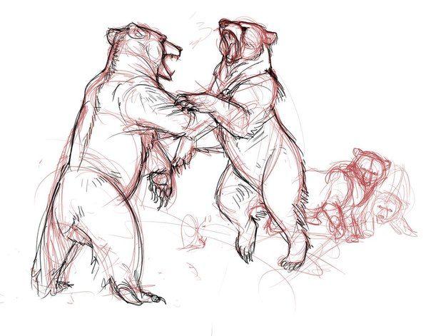 Mejores 278 imágenes de How to draw animals en Pinterest | Dibujar ...