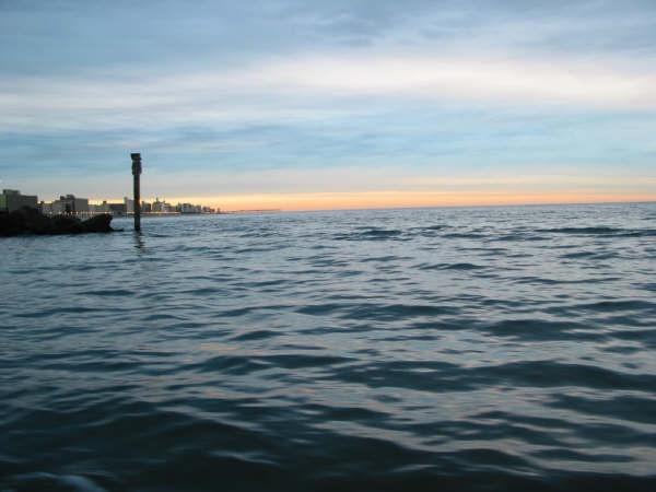 Virginia beach morning fishing run out of rudee inlet for Fishing virginia beach