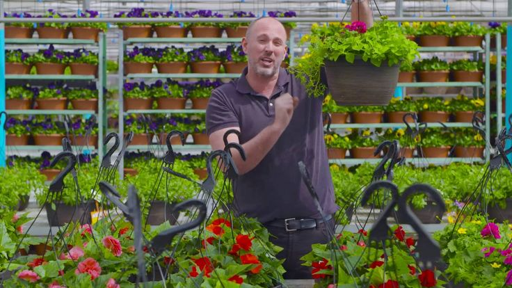 Carson Arthur teaches us about different styles of hanging baskets!