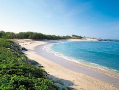 Just a taste of what Four Seasons Punta Mita has to offer