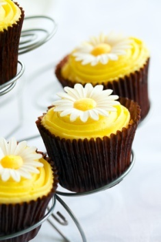 Yellow daisy cupcakes - this is close to what I want to have.