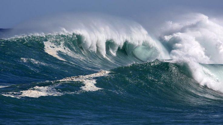 Et si la plus grande menace pour l'humanité était l'acidification des océans? http://www.bfmtv.com//planete/et-si-la-plus-grande-menace-pour-l-humanite-etait-l-acidification-des-oceans-878267.html…