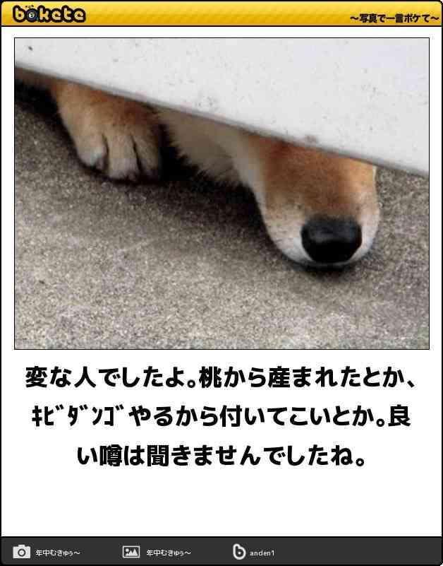 お気に入りのボケて(bokete)画像!! | ガールズちゃんねる - Girls Channel -