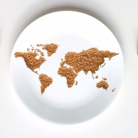 lutte-contre-la-faim