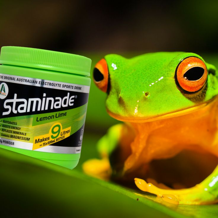 This little guy loves his green Staminade, What's your favourite flavour?