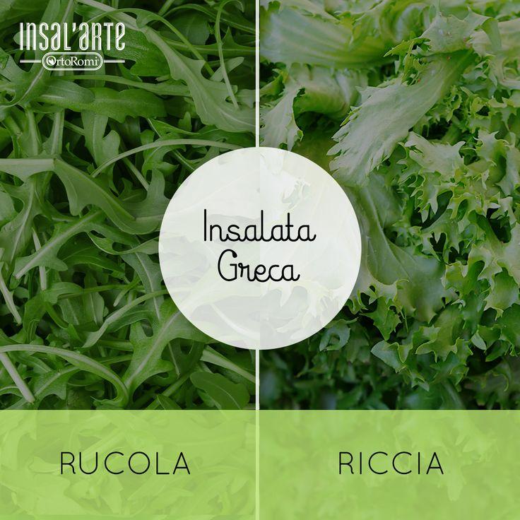 Rivisitiamo l'Insalata Greca aggiungendo rucola o riccia? #insalata #rucola #riccia #salad