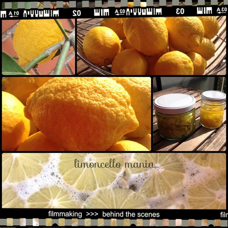 My Homemade Limoncello