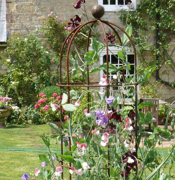 6ft Metal Obelisk. www.casterbridgeplantsupports.co.uk