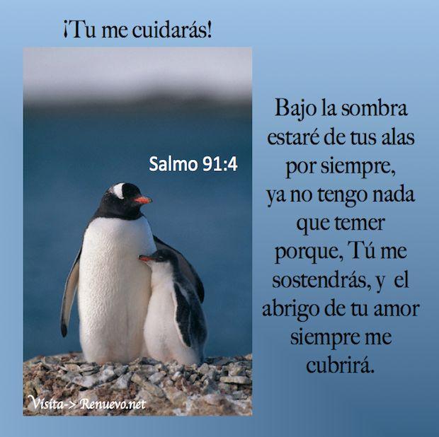 Promesa - Tú Me Cuidas! Bajo la sombra estaré de tus alas por siempre, ya no tengo nada que temer porque Tú me sostendrás, y el abrigo de tu amor siempre me cubrirá. ¡Tu me cuidarás! Salmo 91:4 Con sus plumas te cubrirá, Y debajo de sus alas estarás seguro; Escudo y adarga es su verdad. Salmos 36:7 ¡Cuán preciosa es, oh Dios, tu misericordia! Por eso los hijos de los hombres se refugian a la sombra de tus alas. Salmos 17:8 Guárdame como a la niña de tus ojos; escóndeme a la sombra de tus…