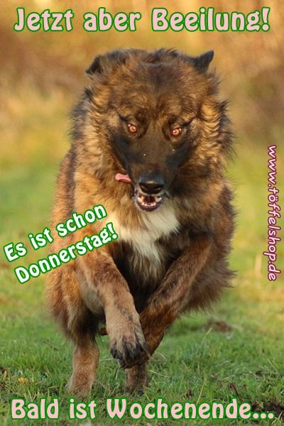 Hackengas :-)