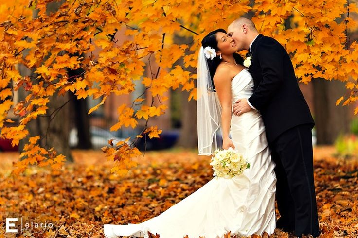 433 Best Karen's October Outdoor Wedding Ideas Images On