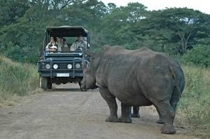 hluhluwe game reserve - Google Search