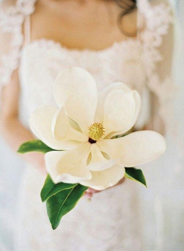 single oversized magnolia wedding bouquet ideas