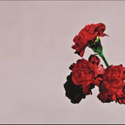 Trovato All Of Me (Tiesto Remix) di John Legend con Shazam, ascolta: http://www.shazam.com/discover/track/105467906