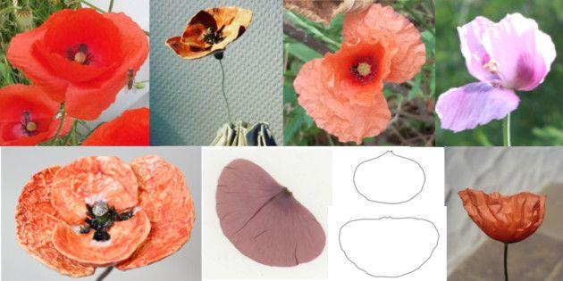 Zauberhafte Mohnblume Aus Keramik Ton Keramik Blumen Mohnblume Blumen