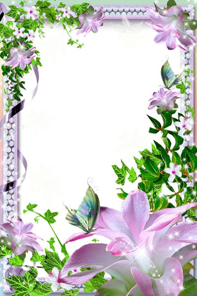 Transparent PNG Photo Frame with Pink Lilies
