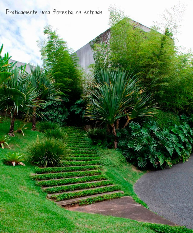 entrance + stairs + garden