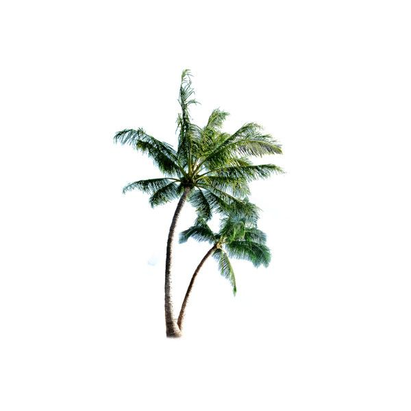 """PSD Detail 