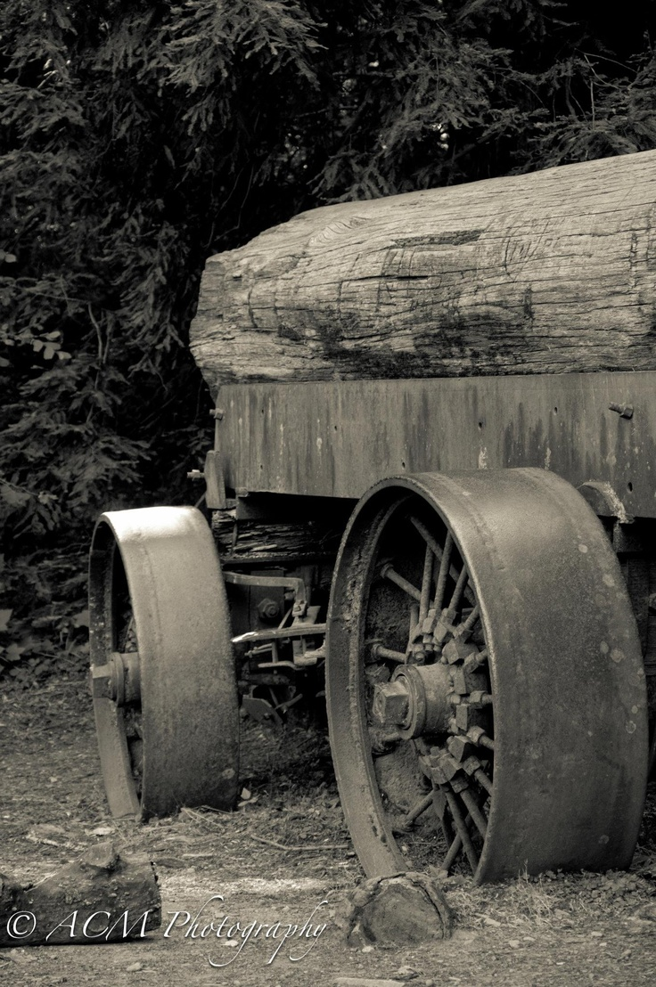 Just an old wagon