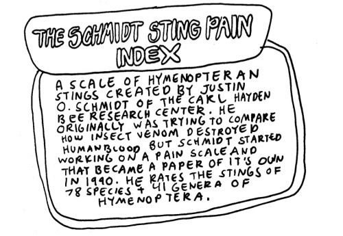 The Schmidt Sting Pain Index | Resonating Bodies