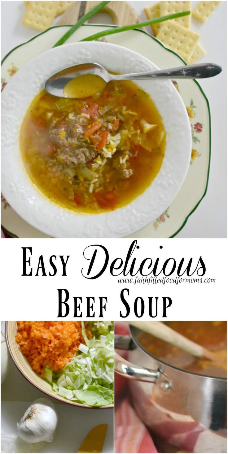 easy delicious beef soup recipe soups beef soups and beef