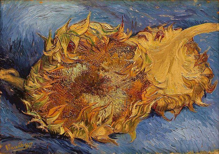 Color Schemes In Art Vincent Van Gogh Van Gogh Van Gogh Sunflowers