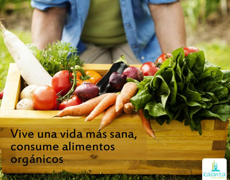 El consumo de alimentos orgánicos equilibra las hormonas e impide la absorción de productos químicos.