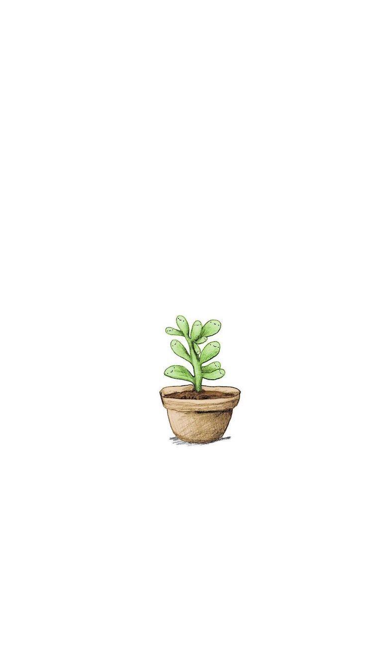 Stampe Di Cactus Per Www Hermanogato Com Plants Wallpaper Plant Wallpaper Wallpaper Plant Aesthetic cute cartoon cactus wallpaper