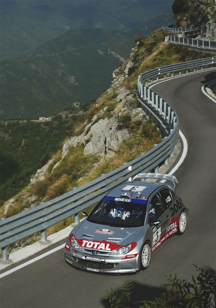 The Rally - Peugeot 206
