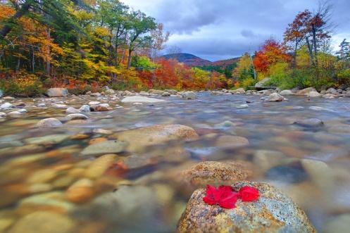 Swift River, White Mountains, NH
