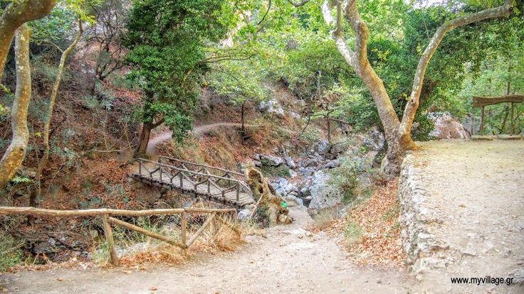 Φαράγγι Αγίου Αντωνίου Ρέθυμνο Κρήτης Βρίσκεται σε μια καταπράσινη περιοχή με πολλά νερά, έχει υποδομή για οικογενειακά πικ νικ, ξύλινα γεφυράκια, σκάλες, αρκετές ενημερωτικές ταμπέλες. Η διάβαση του φαραγγιού είναι αρκετά εύκολη και είναι μια καλή ευκαιρία για μια μονοήμερη εκδρομή μέσα στο πράσινο