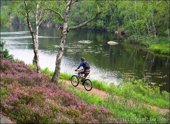 Photos of Hillside Cycling – Guided Mountainbike Tours Day Tours, Gothenburg – Attraction Images – TripAdvisor