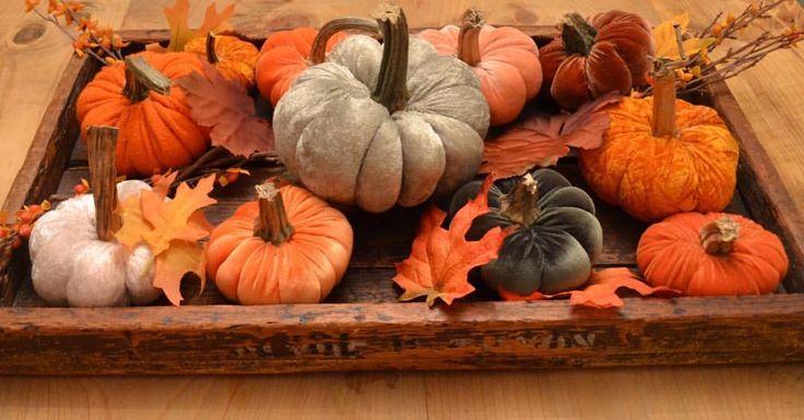 "17 Likes, 1 Comments - Terri Larson (@plum_street) on Instagram: ""Fabric pumpkins headed for @primfolkfest in Des Moines."""