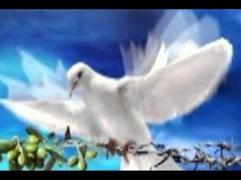 La Paloma - Julio Iglesias - lyrics - YouTube