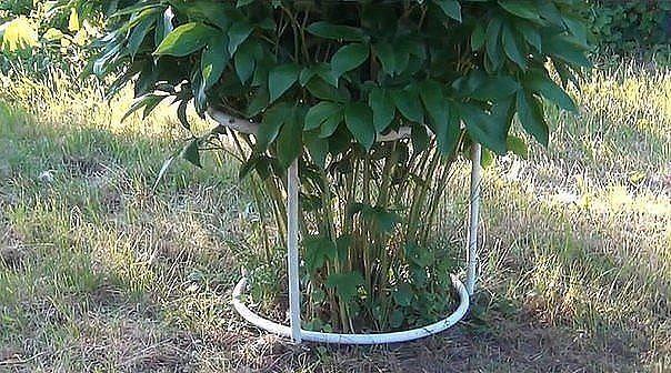 Нам понадобится:1. металлопластиковая водопроводная труба2. кусок дерева, в данном случае вагонка3. кусок садового шланга диаметром чуть больше водопроводной трубы4. саморезыДелаем заготовкиДля создан…