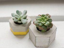 Tutoriel DIY: Fabriquer un cache-pot en béton hexagonal via DaWanda.com