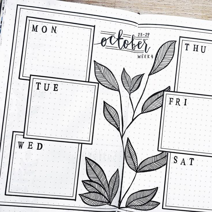 Bullet journal weekly layout, plant drawing, simple and clean bullet journal layout. @sushi__studies