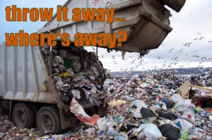 Think Before You Throw Away Anything, Can It Be Recycled?
