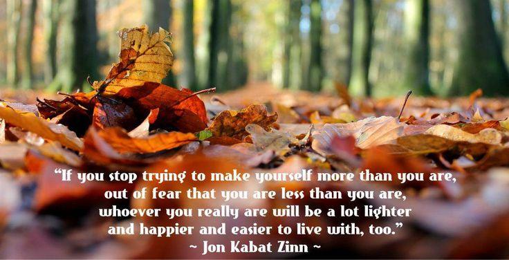 Quote: Jon Kabat Zinn