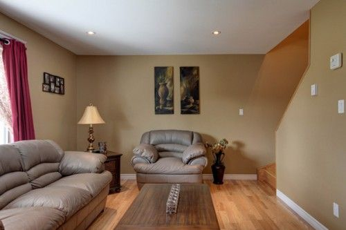 Brown paint color schemes the best living room paint for Living room paint ideas with brown furniture