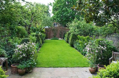 25 best ideas about london garden on pinterest small for Herbaceous border design examples