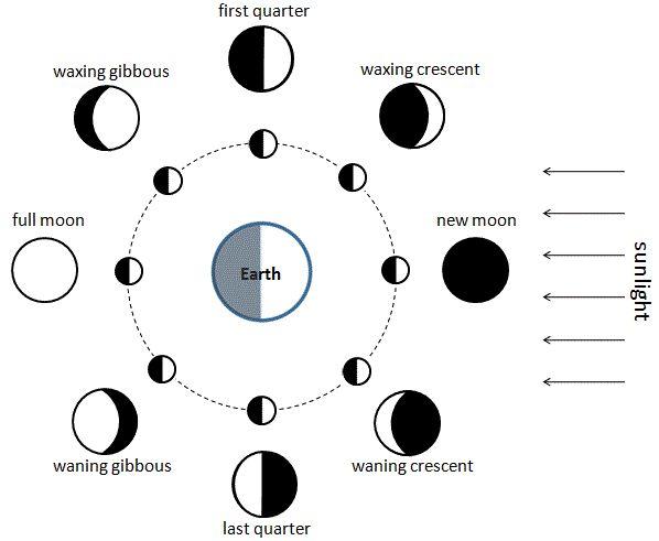 87 best images about moon callendar on pinterest