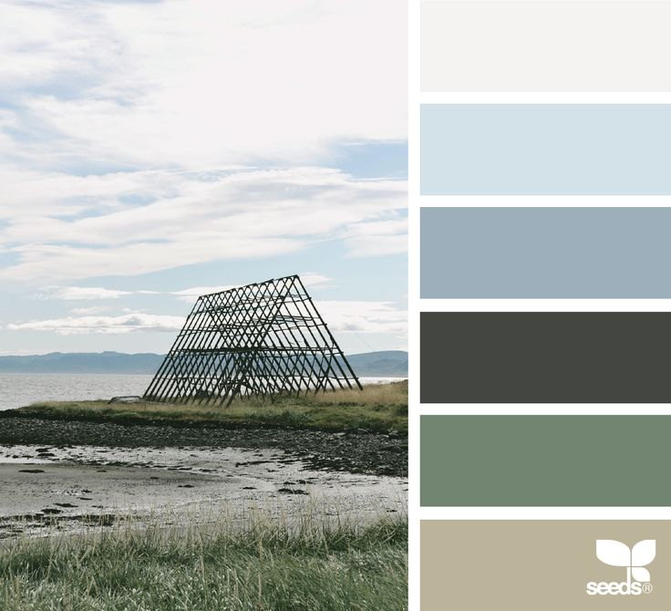 { color view } image via: @arctic_stories